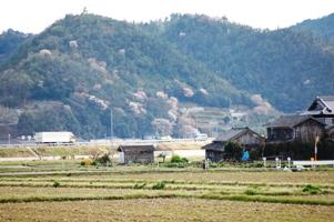 工場の前に広がる田んぼと山